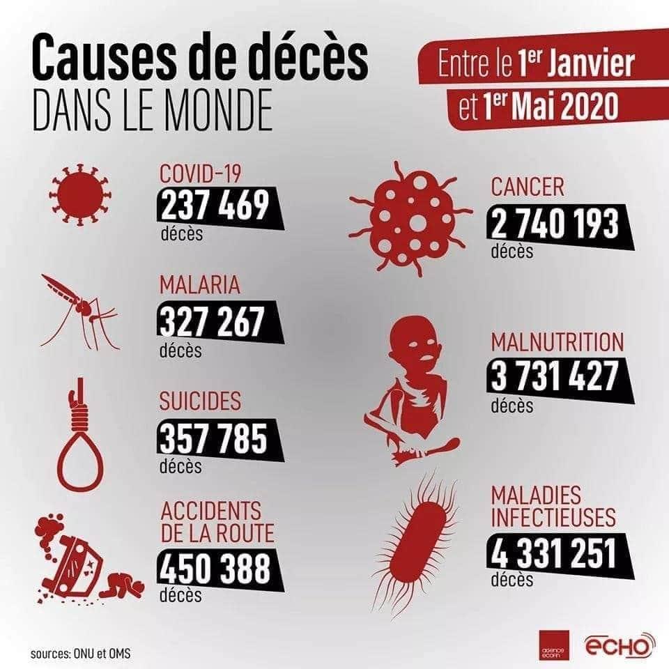 Causes de décès dans le monde entre le 1er janvier et le 1er mai 2020